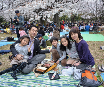Hanami in Tokyo with kids Childs Play Japan Times